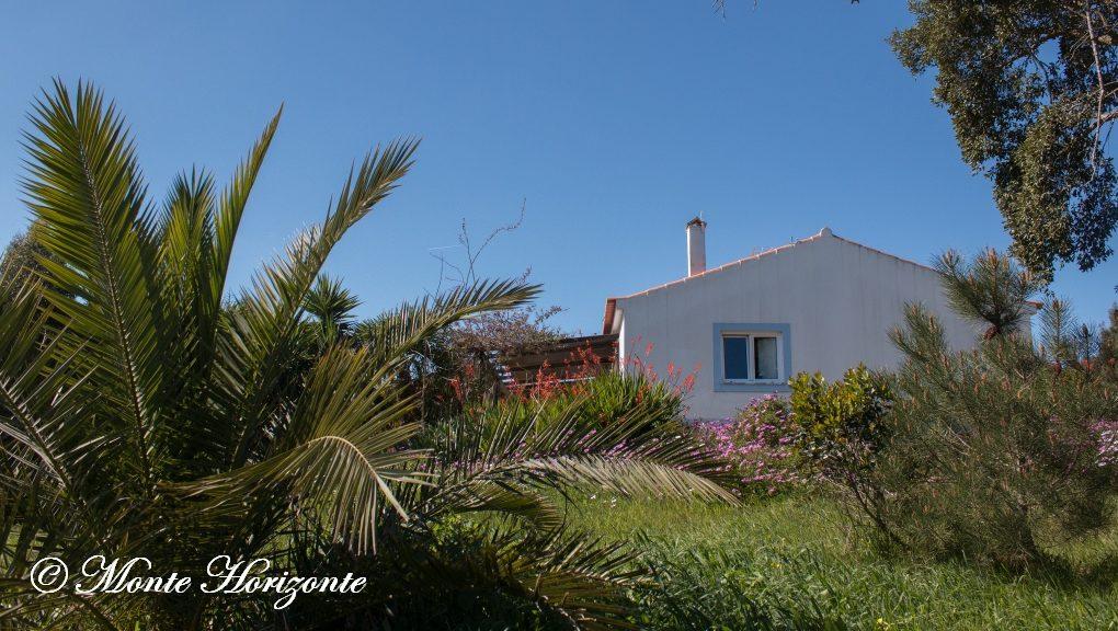 Casa Passaro Vogelvakantie Portugal