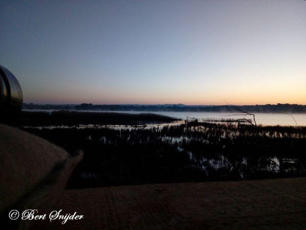 Vogelkijkhut BSP2 Portugal